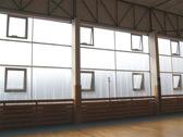 Panelové zámkové systémy, Modulit